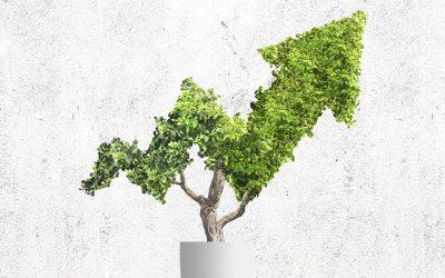 Sustentabilidade, a chave para o sucesso da MAPFRE