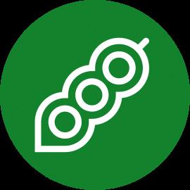 Icono Soja
